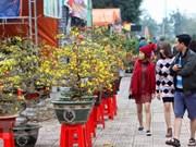 Extranjeros emocionados con atmósfera del Año Nuevo Lunar en Vietnam