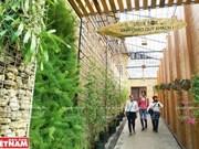 Green Box, nuevo modelo de agroturismo en Da Lat