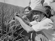 Homenaje a expremier vietnamita Pham Van Dong en aniversario de su natalicio