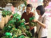 Prevé exportación de longan vietnamita a mercado australiano en 2019