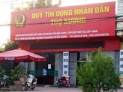 Vietnam cuenta con mil 182 fondos de crédito popular