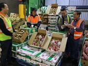 ASEAN- segundo mayor importador de productos agrícolas de Sudcorea