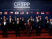 CPTPP dará un nuevo impulso a nexos Vietnam-Chile, dice embajador vietnamita