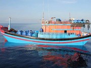 Provincia vietnamita de Phu Yen refuerza combate contra la pesca ilegal