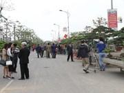 Exponen plantas y objetos ornamentales típicos en Vietnam