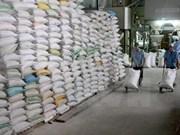 Arroz japónico puede ser variedad clave de exportación de Vietnam