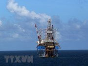 Banco japonés considera financiar proyecto del Grupo de Petróleo y Gas de Vietnam