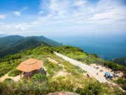 Aspira Da Nang a convertir al turismo en locomotora de la economía local
