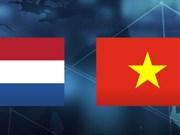 Visita de presidenta parlamentaria muestra dinámica de nexos Vietnam- Países Bajos