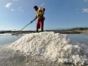 Indonesia importará 3,7 millones de toneladas de sal industrial este año