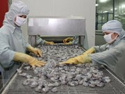 Vietnam reporta gran crecimiento de exportaciones de productos acuícolas en primer trimestre