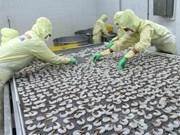Vietnam busca soluciones contra devolución de productos acuícolas del extranjero