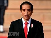 Gobierno de Indonesia revisa proyectos estratégicos nacionales
