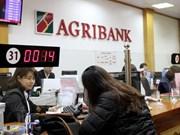 """Agribank honrado como """"Marca poderosa de Vietnam"""""""