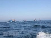 Prohibición temporal de China de pesca en el Mar del Este carece de validez, según ministerio vietnamita