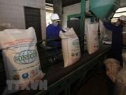 Industria azucarera de Vietnam avanza hacia la sostenibilidad