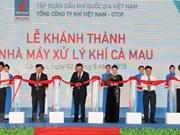 Presidenta parlamentaria de Vietnam asiste a la inauguración de planta procesadora de gas en Ca Mau