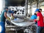 Cruzada contra la pesca ilegal, misión permanente de Vietnam