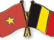 Delegación de 65 empresas belgas llegará a Vietnam para buscar socios