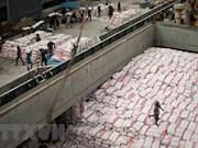Buenas señales para la exportación de arroz de Vietnam