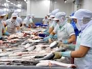 Evalúan de alcanzable meta de Vietnam de exportaciones del pescado Tra