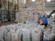 Puerta ancha para exportación de arroz vietnamita
