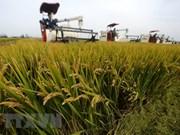 Países del Sudeste Asiático serán afectados severamente por cambio climático