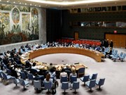 Vietnam, único representante de Asia-Pacífico para candidatura al Consejo de Seguridad de la ONU