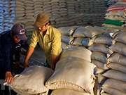 Vietnam gana contrato de exportación de arroz a Corea del Sur