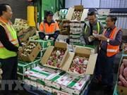 Agricultura de Vietnam prevé ingresar 40 mil millones de dólares por exportaciones en 2018