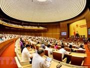 Parlamento de Vietnam analiza borradores de leyes de Policía Popular y Ganadería