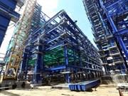 Vietnam puede erradicar construcción de plantas termoeléctricas en 2020