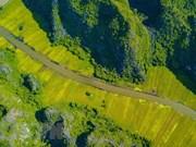 Provincia norvietnamita de Ninh Binh busca promover turismo local
