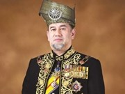 Rey malasio reduce voluntariamente su salario para controlar deudas estatales