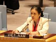 Vietnam reitera ante ONU  atención  y apoyo a minusválidos