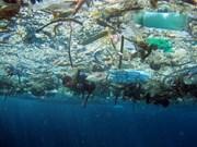 Vietnam responde al Día Mundial del Medio Ambiente y a la Semana del Mar y las Islas