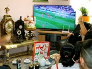 Copa Mundial de Fútbol ayuda a reforzar solidaridad entre vietnamitas en República Checa