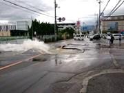 No reportan ninguna víctima vietnamita en terremoto en Japón