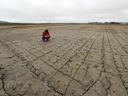 Vietnam responde al Día Mundial de Lucha contra la Desertificación y la Sequía