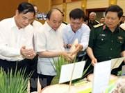 Premier vietnamita resalta efectividad del proyecto de modernización agrícola