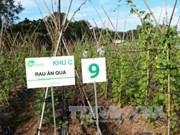 Corporación Financiera Internacional asiste a Vietnam a mejorar inocuidad de los alimentos