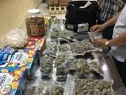 Detectan en Vietnam varios casos de tráfico de marihuana