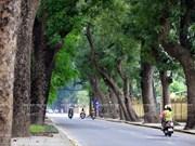 Foro de Hanoi sobre desarrollo sostenible se efectuará en noviembre próximo