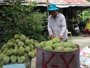 Vietnam se proponer mayor exportación de frutas  a China
