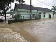 Provincias vietnamitas impulsan recuperación en áreas golpeadas por inundaciones