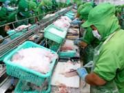 Nuevas oportunidades para exportación de pescado Tra de Vietnam a China
