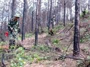 Vietnam por avanzar en mitigación de secuelas de minas remanentes de guerra