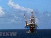 Corporación petrolera de Vietnam aporta  217 millones de dólares al presupuesto estatal