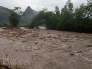 Socorristas de Vietnam salvan a más de cinco mil personas afectadas por desastres naturales en 2017