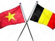 Celebran programa de intercambio de amistad por aniversario de nexos Vietnam-Bélgica